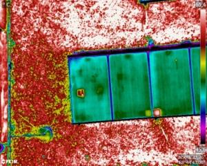 Solarzellen Wärmebildaufnahme