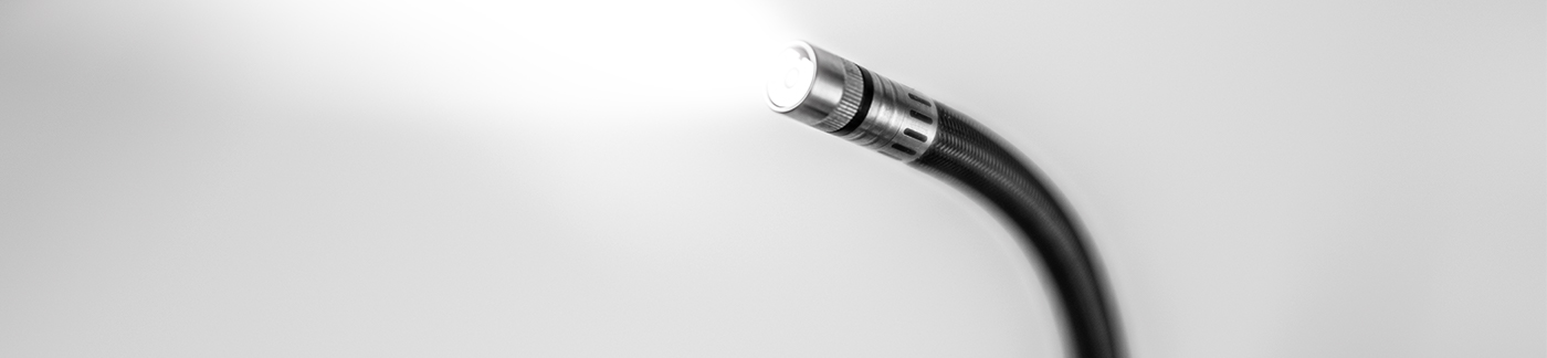 VUCAM probe with light